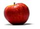 BIO Apfel direkt naturtrüb